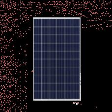 Trina Honey 290 Watt Polycrystalline Solar Module